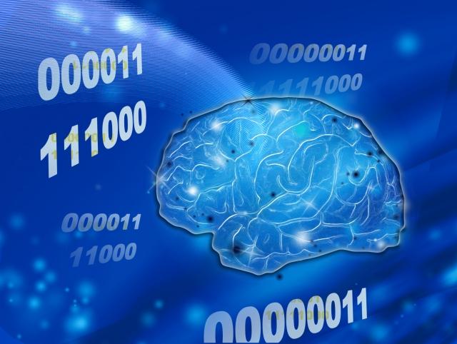 IQ(知能指数)