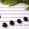 音楽の知育玩具