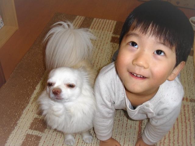 子供と犬の関係